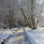 Przepis na motywację w sezonie: jesień – zima