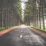 Asfalt czy drogi gruntowe – gdzie biegać?
