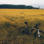 Biegacz na rowerze – cz. 3