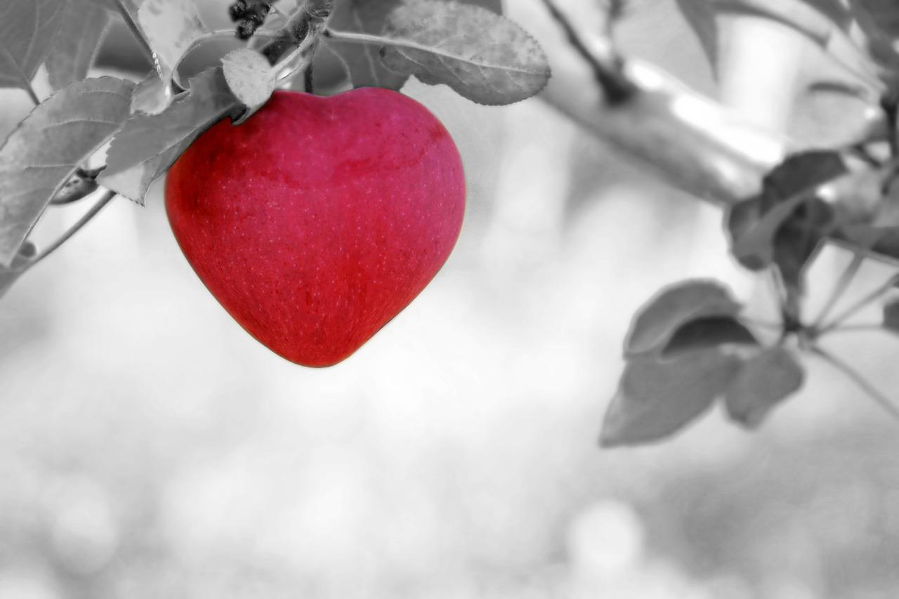 trening biegowy korzystnie wpływa na serce
