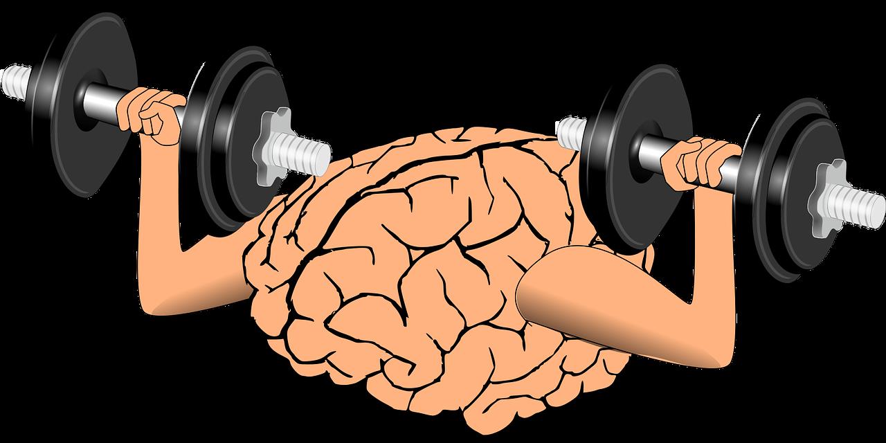 trening biegowy usprawnia funkcjonowanie naszego mózgu!
