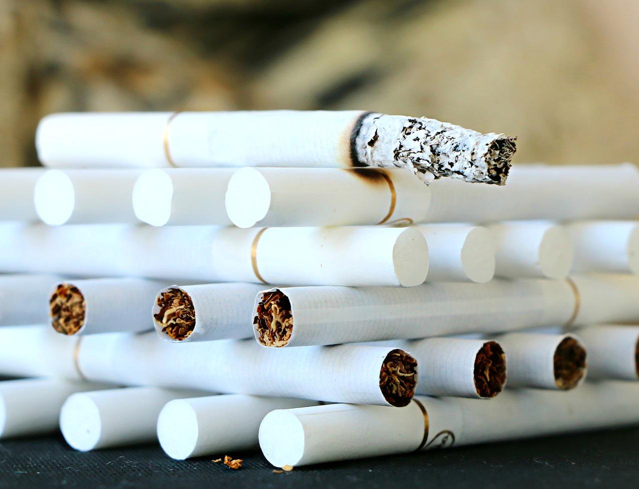 palacy biegacz